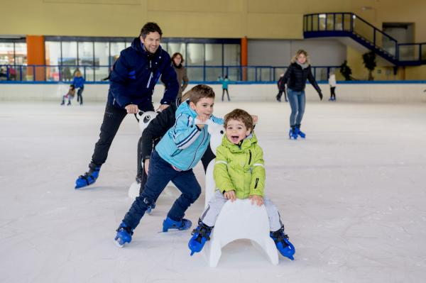 Subscription for 10 entrances for the ice rink for Children