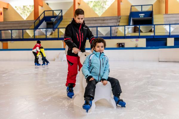 Ice Rink: 10 entrance with skates for CHILD