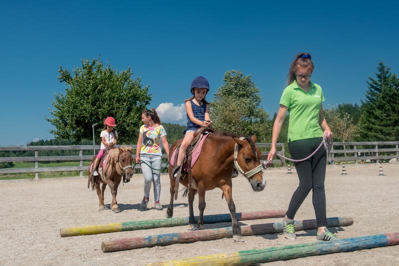 2016 PHMatteoDeStefano_Andalo_bambini_montagna_family_equitazione_cavalli_carrozza_pony_parco_Life_Dolomiti_Paganella_Trentino(50)