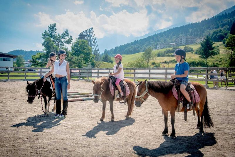 centro equitazione Andalo Dolomiti Paganella e carrozza con cavalli per passeggiate in montagna in Trentino a cavallo