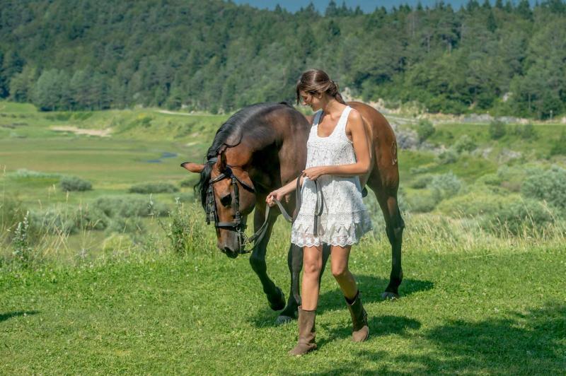 Maneggio e Centro Equitazione
